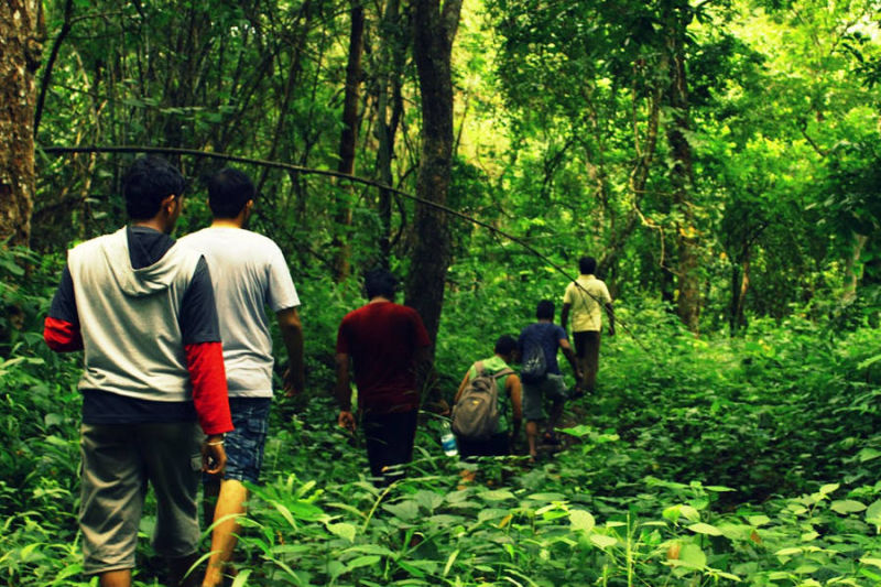 Forest Trekking In Maredumilli